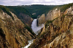 Three great tours offer unique experiences in Yellowstone this summer.