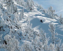 Mammoth Mountain guarantees snow for the 2012/2013 ski season